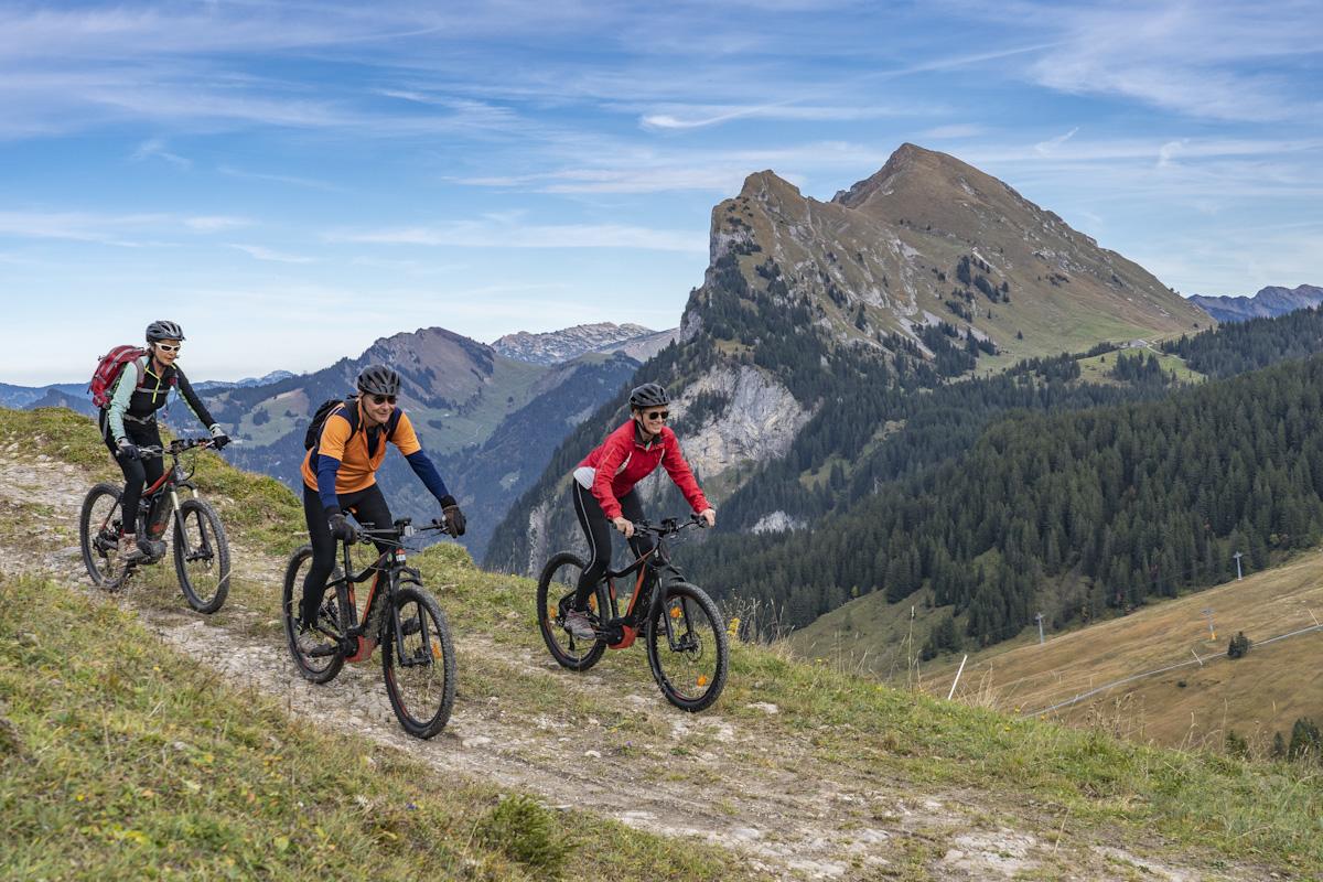 Drei Mountainbiker sind auf einer Forststraße unterwegs.