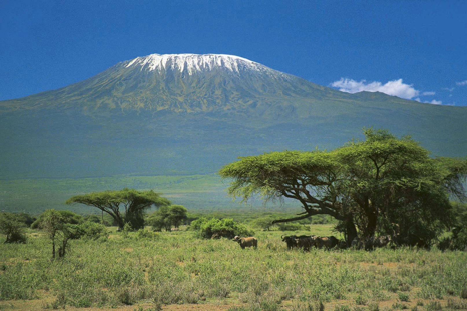Trekkinggipfel: Der Kilimanjaro