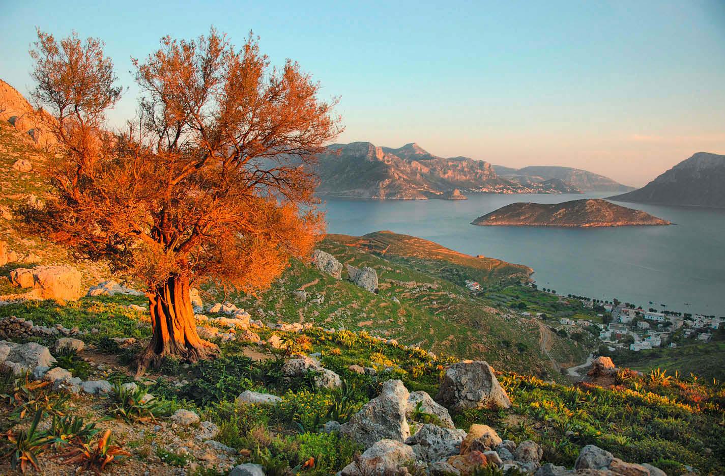 Unter der Sonne Griechenlands