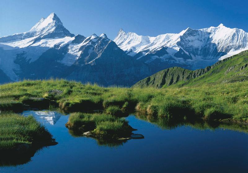 Die Gipfelparade der Berner Viertausender – in der Mitte das Finsteraarhorn, links das Schreckhorn, rechts das Fiescherhorn