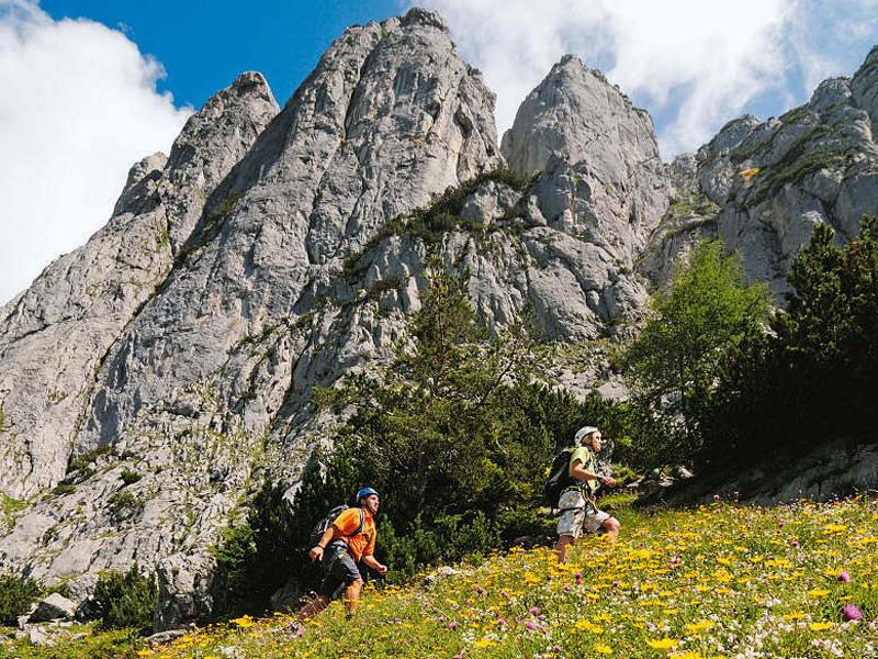 Blumenmeer unter steilem Fels: Der »Schuasta-Gangl geizt nicht mit Reizen.