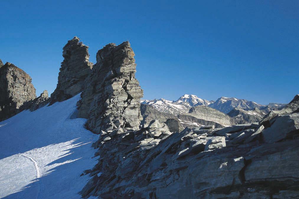 Zackige Gesellen – am Adulajoch auf dem Weg zum Gipfel des Rheinwaldhorns