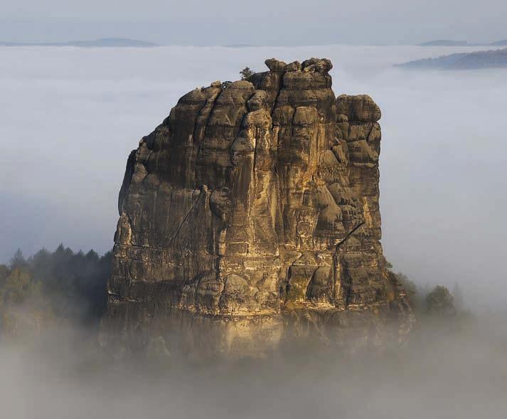 Der Falkenstein, gute 100 Meter hoch, ist der gewaltigste Gipfel in der Sächsischen Schweiz