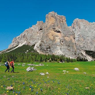 Grauer Fels über grünen Blumenwiesen: Traumwelt Dolomiten; in der südlichen Civetta, rechts der Bildmitte der Torre Venezia und die Cima della Busazza, zwei berühmte Kletterzacken. Foto: Manfred Kostner