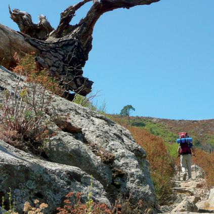 Laufen, soweit die Füße tragen: 176 Kilometer durch ganz Korsika, über Stock und Stein und felsige Bergketten, 10 000 Höhenmeter hinauf und wieder hinunter