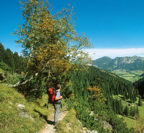Kurz nach der Unteren Roßalm bieten sich wunderschöne Ausblicke auf das Tannheimer Tal