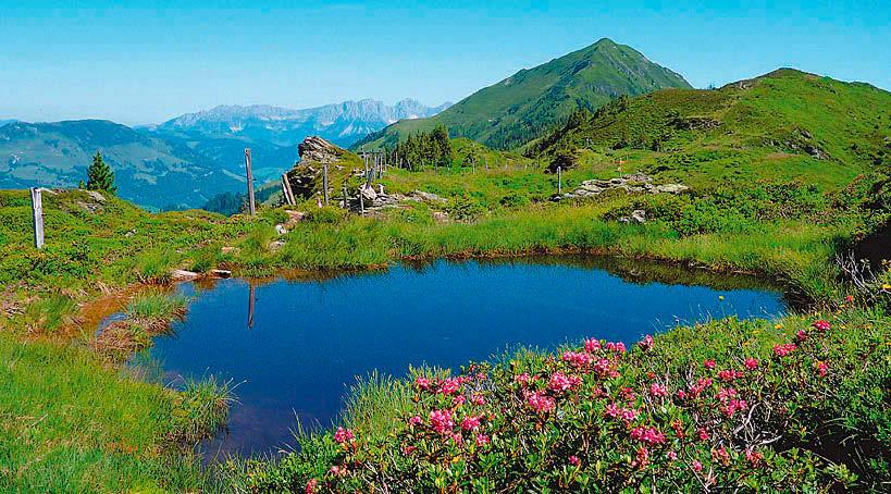 Kitzbueheler Alpentrek