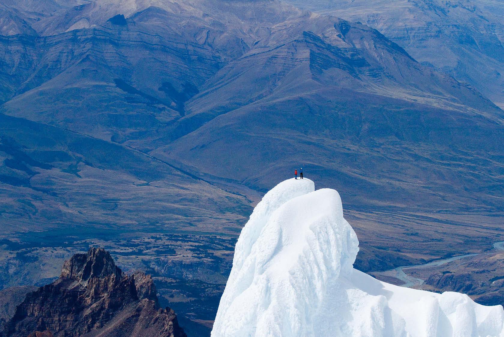 Lama am Gipfel des Cerro Torre
