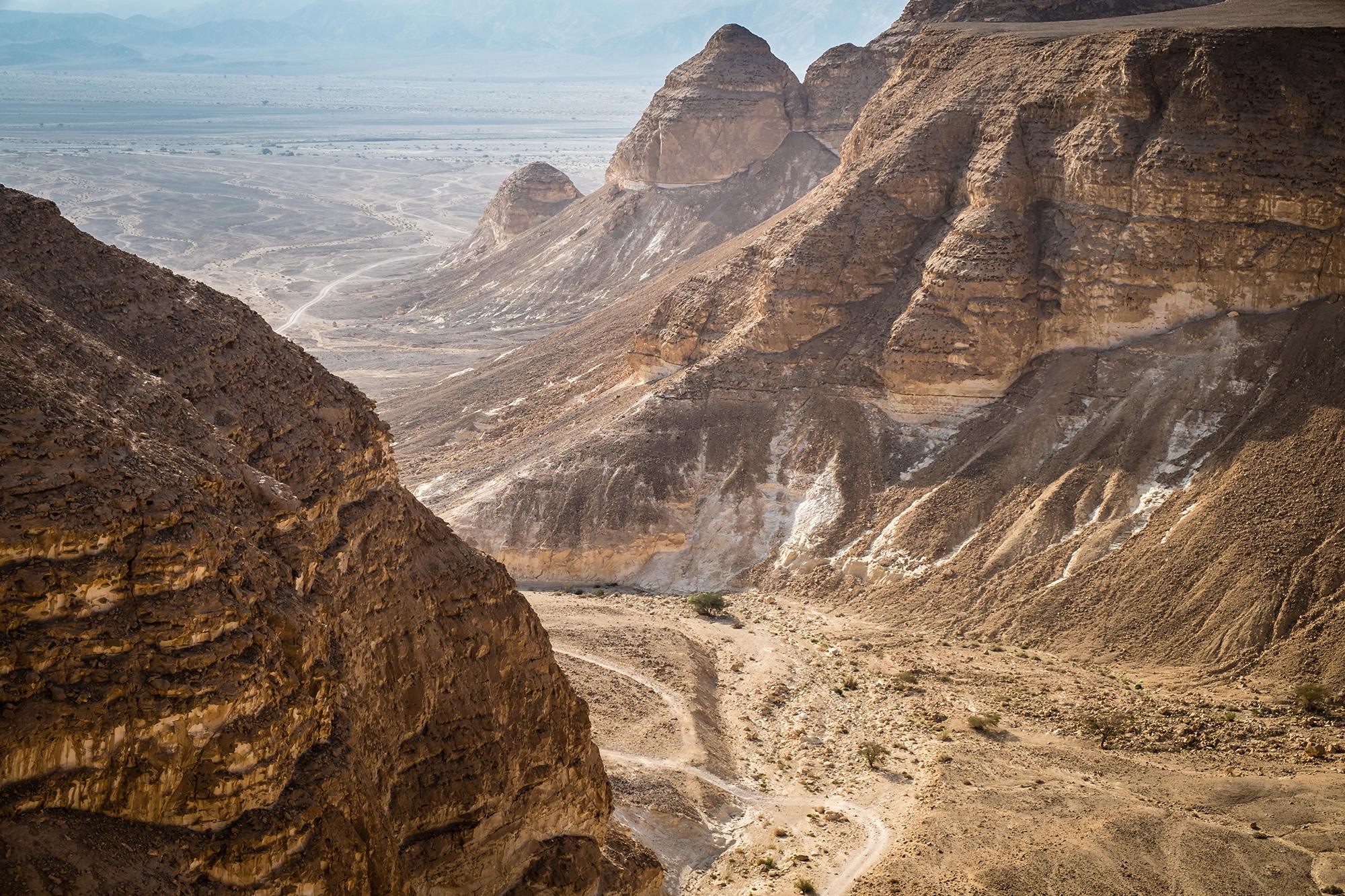 Vardit Canyon in der Negev- Wüste