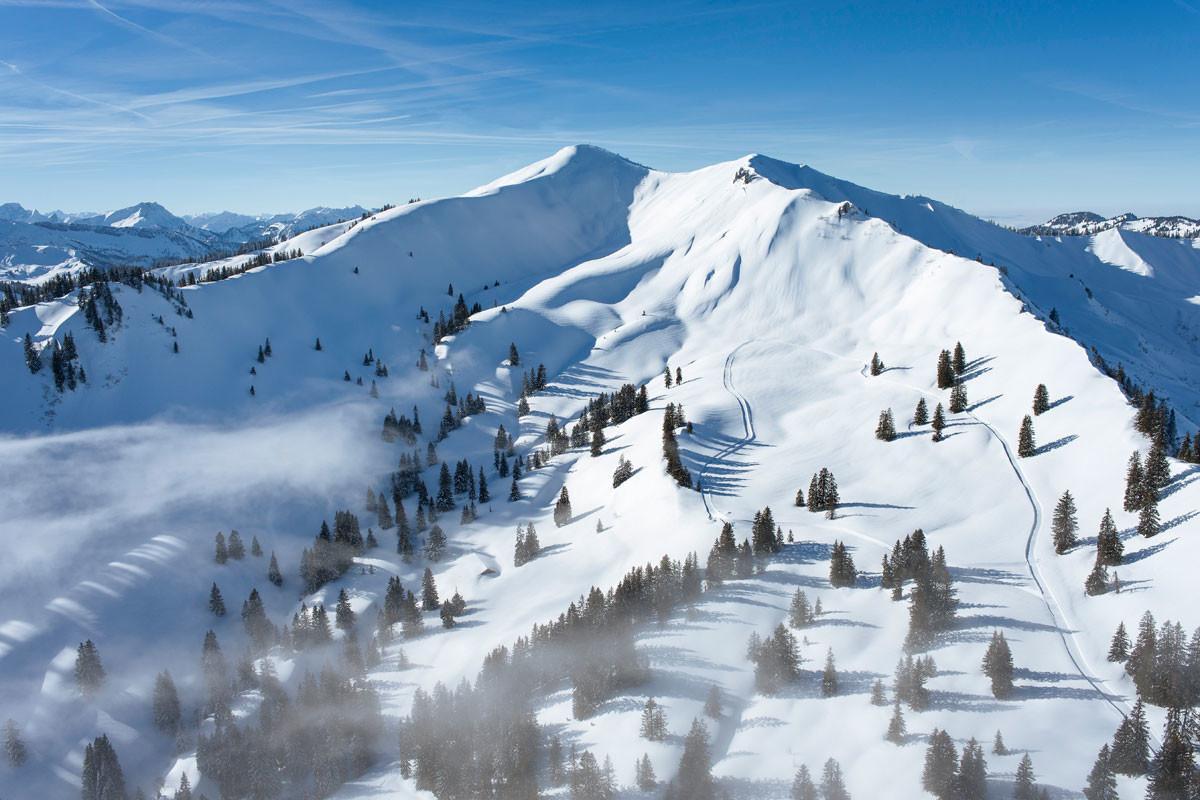 Am Riedberger Horn zeigte sich 2018, welche Wirkung der kontinuierliche Einsatz des Alpenvereins für den Naturschutz haben kann.