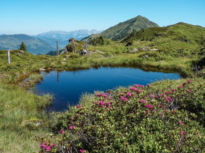 Kaiserliche Aussicht: Den Wilden Kaiser im Blick auf Etappe 3 des KAT Walk Alpin