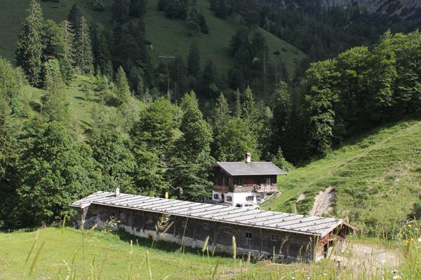 Eine leichte Wanderung führt zur Königsalm am Schildenstein