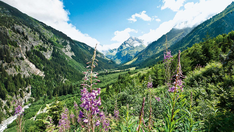 Von lieblich bis schroff : Das Maderanertal ist eine typische Schweizer Landschaft .