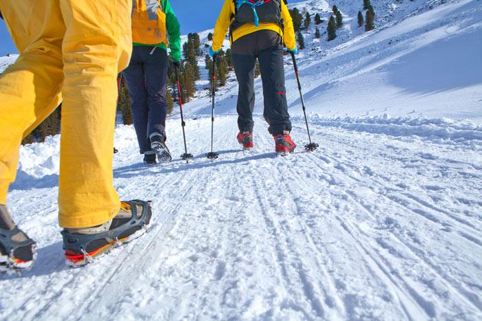 Lacd Klettergurt Test : Verschiedene schuheisen im test bergsteiger magazin