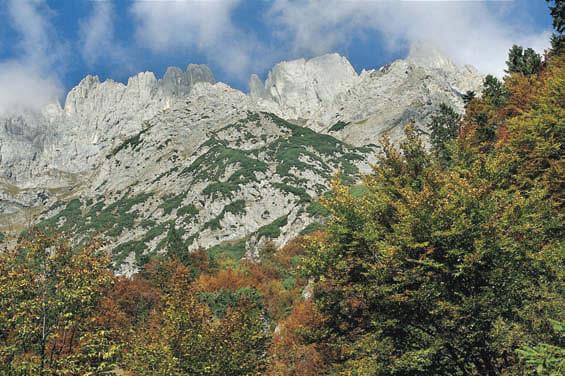 Regalmwand und Regalmspitze vom Gildensteig aus gesehen, in Bildmitte der Daumen