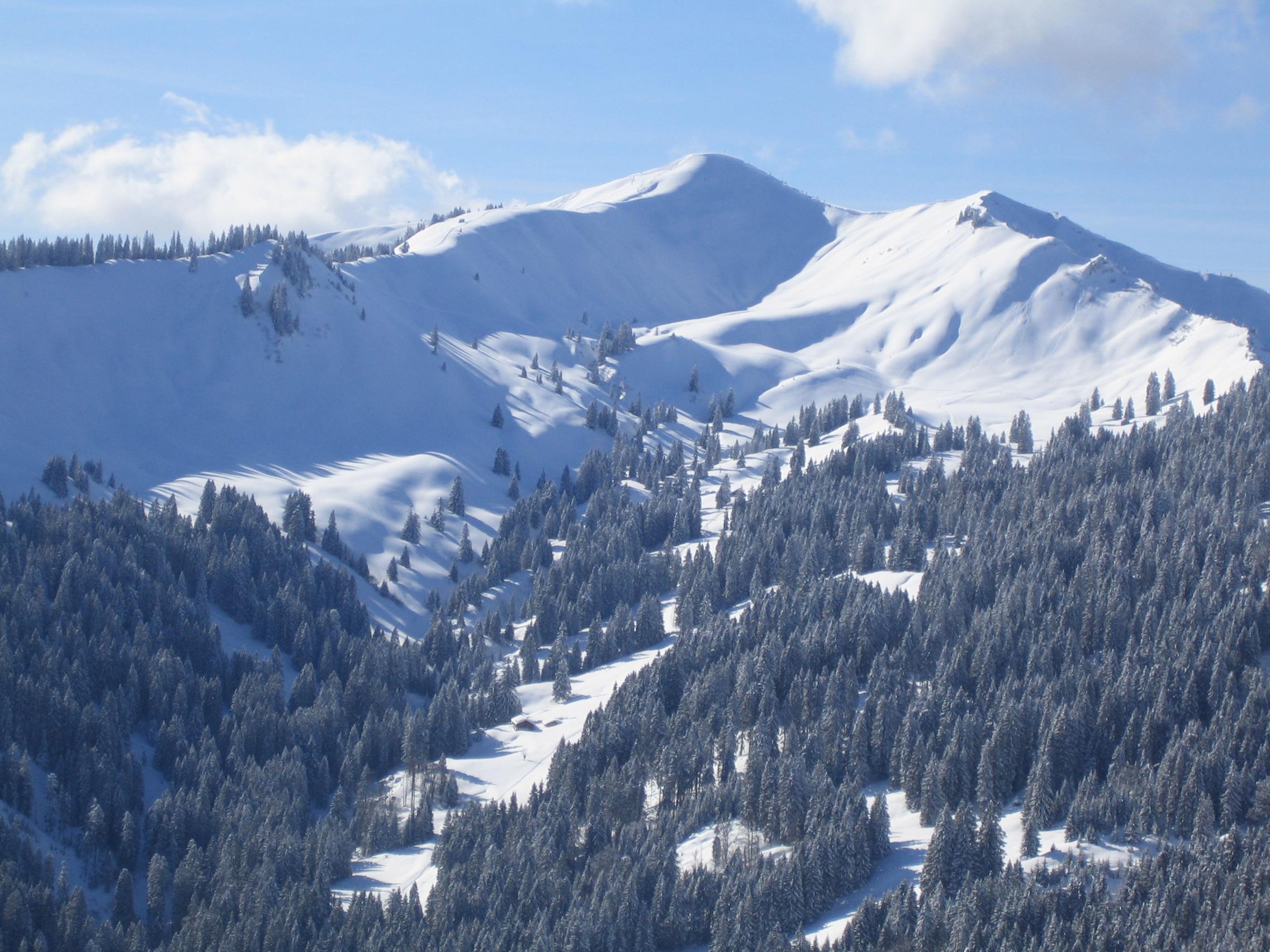 SPD, Grüne und Freie Wähler setzen eine Anhörung zur Zukunft des Alpenplans durch.