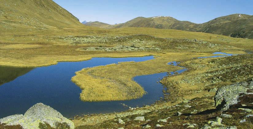 Die Sumpfwiesen am Rosaninsee tragen schon die Farben des späten Herbstes